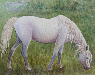 White Horse Watercolor Painting - The White Horse by Kerri Ligatich