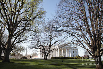 Whitehouse Photograph - The White House And Lawns by Neil Overy