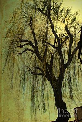 The Willow Tree Art Print by Susanne Van Hulst