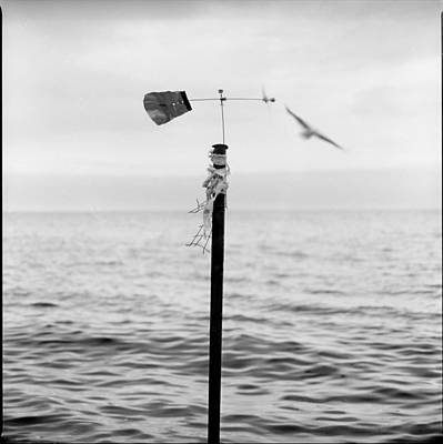 The Wind Art Print by Alexander  Kladoff