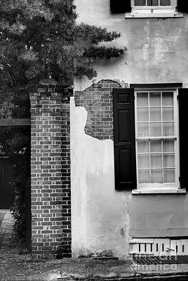 Art Print featuring the photograph The Window by Tamera James