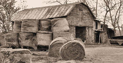 Fauquier County Virginia Photograph - The Working Class by JC Findley