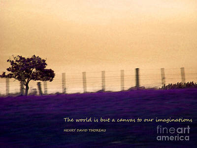 Photograph - The World Is But A Canvas by Karen Lewis