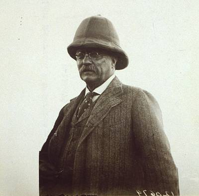 Theodore Roosevelt Wearing A Pith Art Print by Everett