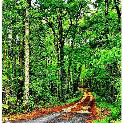 Pathway Photograph - There Are Times In Our Journey Through by Tawanda Baitmon