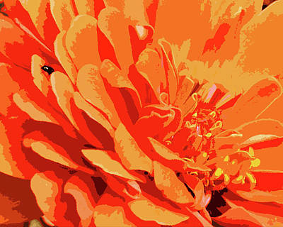 Digital Art - There's A Fly On My Zinnia by Lizi Beard-Ward