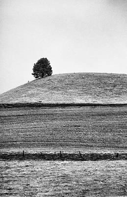 This Is Washington State No. 10b - Palouse One Tree Hill Art Print by Paul W Sharpe Aka Wizard of Wonders