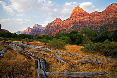 Zion National Park Photograph - This Is Zion by Peter Tellone