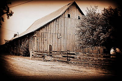 Photograph - This Old Farm I by Kathy Sampson