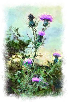 Blue Ridge Parkway Painting - Thistle Flowers Vignette by Dan Carmichael