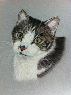 Thomas A Pastel Portrait Art Print by Hillary Rose