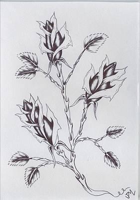 Rosebud Drawing - Thorns And Rosebuds by Justin Murdock