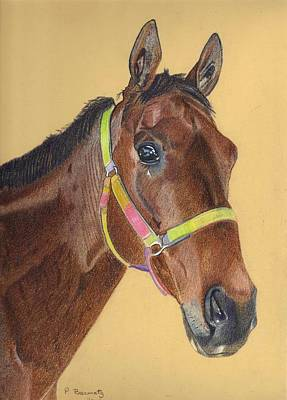 Painting - Thoroughbred by Patricia Barmatz
