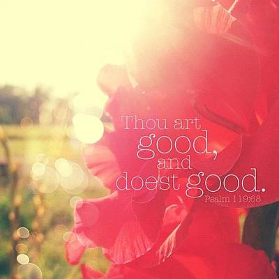Inspirational Photograph - thou Art Good, And Doest Good... by Traci Beeson