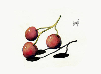 Painting - Three Cherries by Sam Sidders