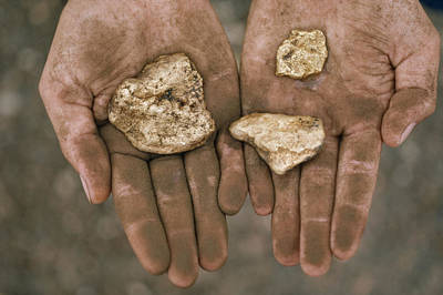 Three Gold Nuggets In A Art Print by National Geographic