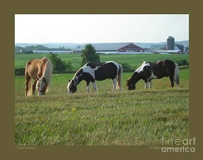 Three Horses Art Print by Patricia Overmoyer