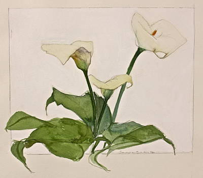 Painting - Three Lilies-posthumously Presented Paintings Of Sachi Spohn  by Cliff Spohn
