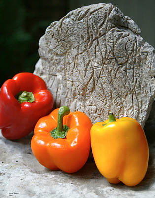 Three Peppers Art Print by Jim  Arnold