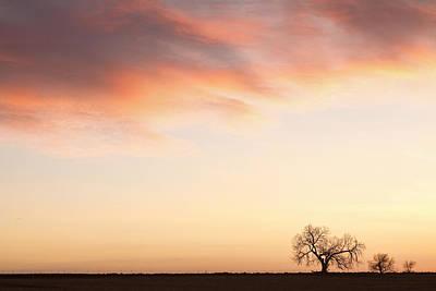 Three Trees Sunrise Sky Landscape Art Print by James BO  Insogna