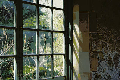 Art Print featuring the photograph View Through The Window by Marilyn Wilson