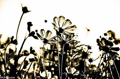 Kornrawiee Photograph - Through Your Eyes by Kornrawiee Miu Miu