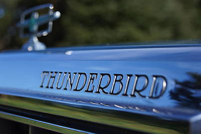 Photograph - Thunderbird by Angi Parks
