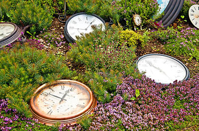 Thyme And Time Art Print by Chris Thaxter