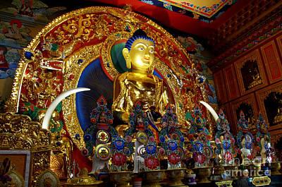 Photograph - Tibetan Bhudda 4 by Bob Christopher