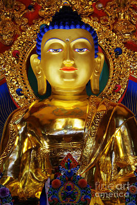 Photograph - Tibetan Buddha 2 by Bob Christopher