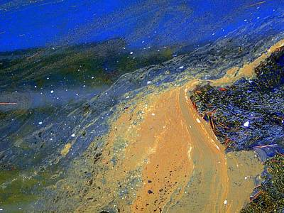 Photograph - Tidal Beauty # 4 by Marcia Lee Jones