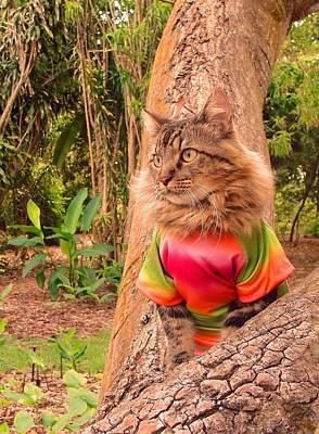 Photograph - Tie-dye by Joann Biondi