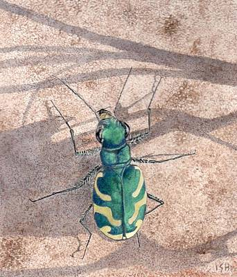 Tiger Beetle Art Print by Inger Hutton