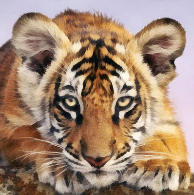 Digital Art - Tiger Cub by Walter Colvin