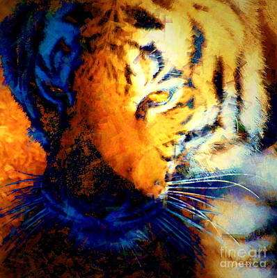 Photograph - Tiger In Shadows - A Wildlife Abstraction by Christine S Zipps