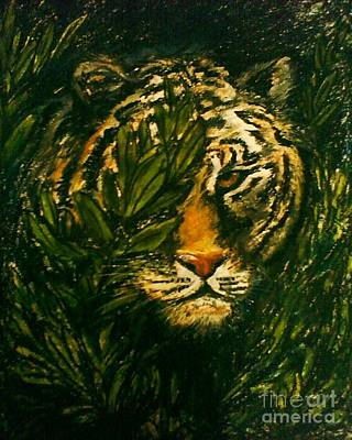 Tiger On The Prowl Art Print by C Ballal