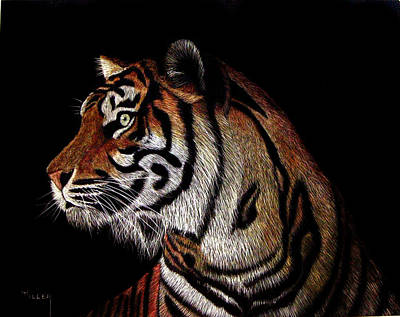 Etching Mixed Media - Tiger Tiger by Linda Hiller