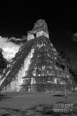 Photograph - Tikal Temple Guatemala by John  Mitchell