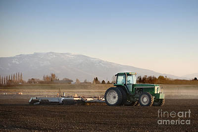 Photograph - Tilling The Soil by Cindy Singleton