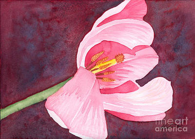 Painting - Tilted Pink Tulip Watecolor by Kristen Fox