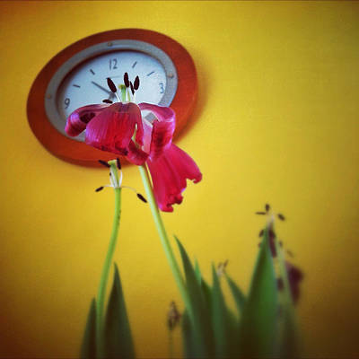 Iphone4 Photograph - Time Stops by Gene Hilton