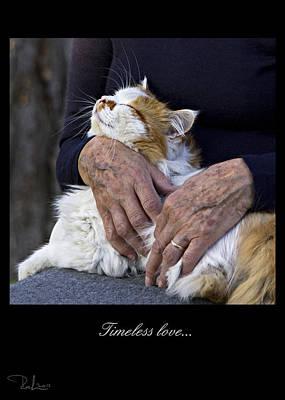 Photograph - Timeless Love  Card by Raffaella Lunelli
