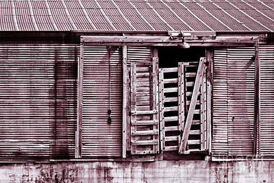 Photograph - Tin Building by Lawrence Burry