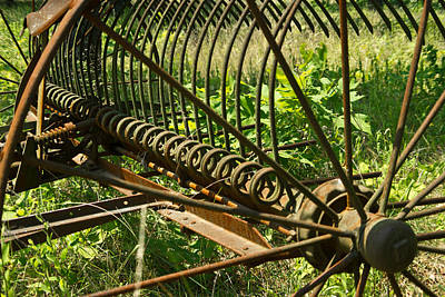 Pastue Photograph - Tines Of A Hayrake by Douglas Barnett