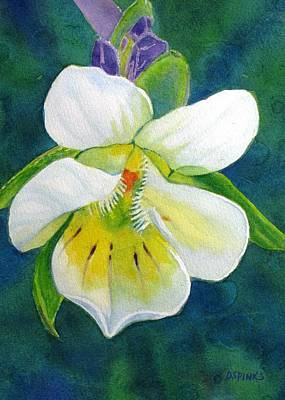 Tiny Wildflower Art Print by Debra Spinks