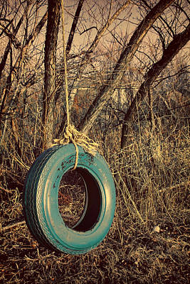 Photograph - Tire Swing by Tony Grider