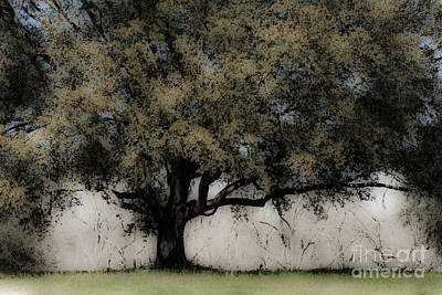 The Trees Mixed Media - To Be by Kim Henderson