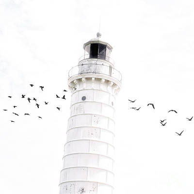 Photograph - To The Lighthouse by Joel Witmeyer