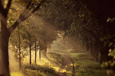 Limburg Photograph - To The Shire by Studio Yuki
