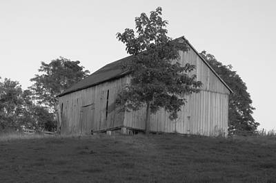 Photograph - Tobacco Barn II In Black And White by JD Grimes